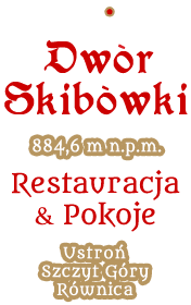 logo skibowki